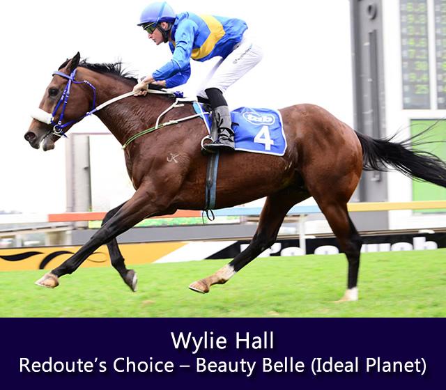 Wylie-Hall-stallion-pageb