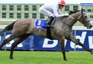 Sun Met betting moves after top wins – via Turf Talk