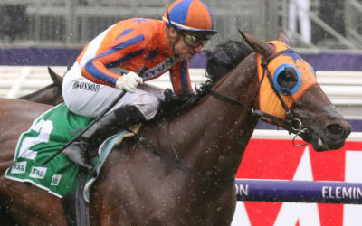 Wylie Hall relative captures Empire Rose Stakes